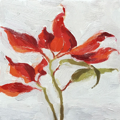 Daily Painting #9 'Poinsettia' 7×7″ Oil on Paper