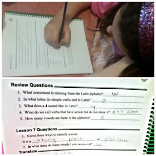 prima latina workbook