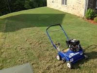 dethatching bermuda grass