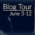 Blog Tour & Giveaway - Damaged Hearts Duet (Box Set) by Emily Krat @EmilyKrat