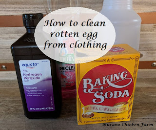 cleaning solution for rotten egg stains