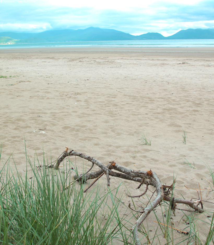 Travelguide Ireland - Inch Beach | whatinaloves.com