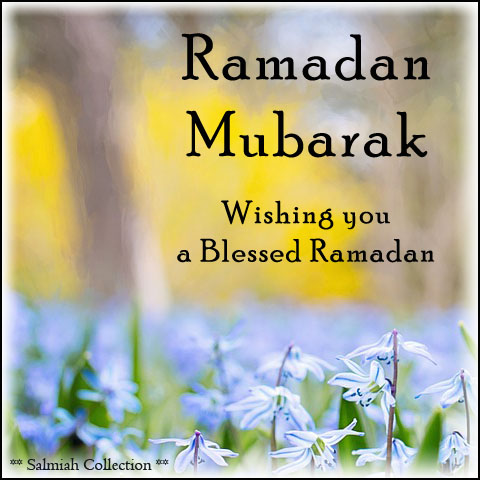 Wishing you a Blessed Ramadan