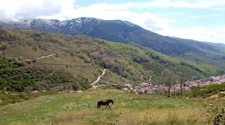 """National Geographic elige al Valle del Jerte como una de """"Las 18 Maravillas Naturales de España"""""""
