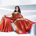 Bhavana Telugu Actress Saree Photo Shoot Stills