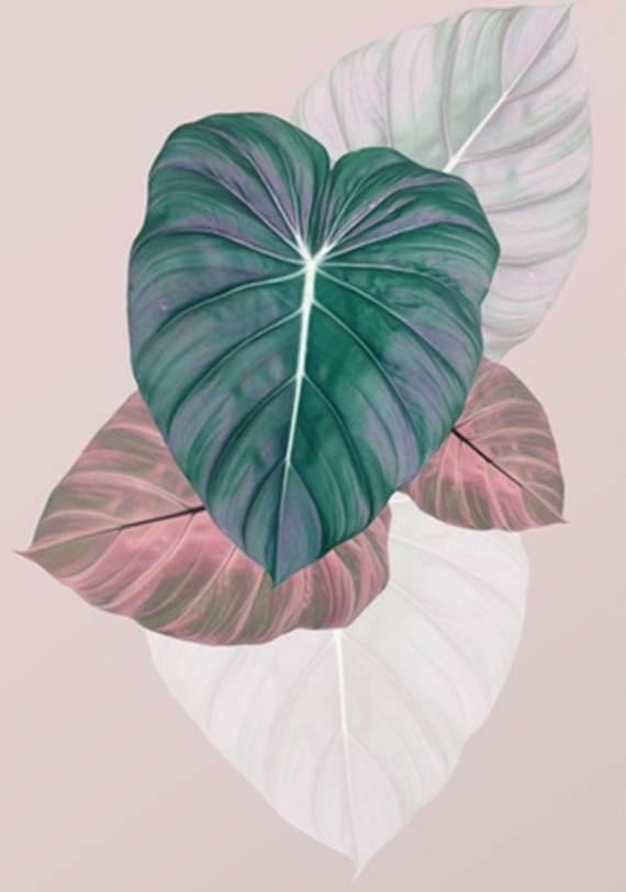 """""""pastel leaves"""" by PrintsProject on Society 6"""