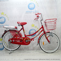 City Bike Exotic ET-9788 20 Inci
