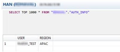 SAP HANA Analytic Privileges