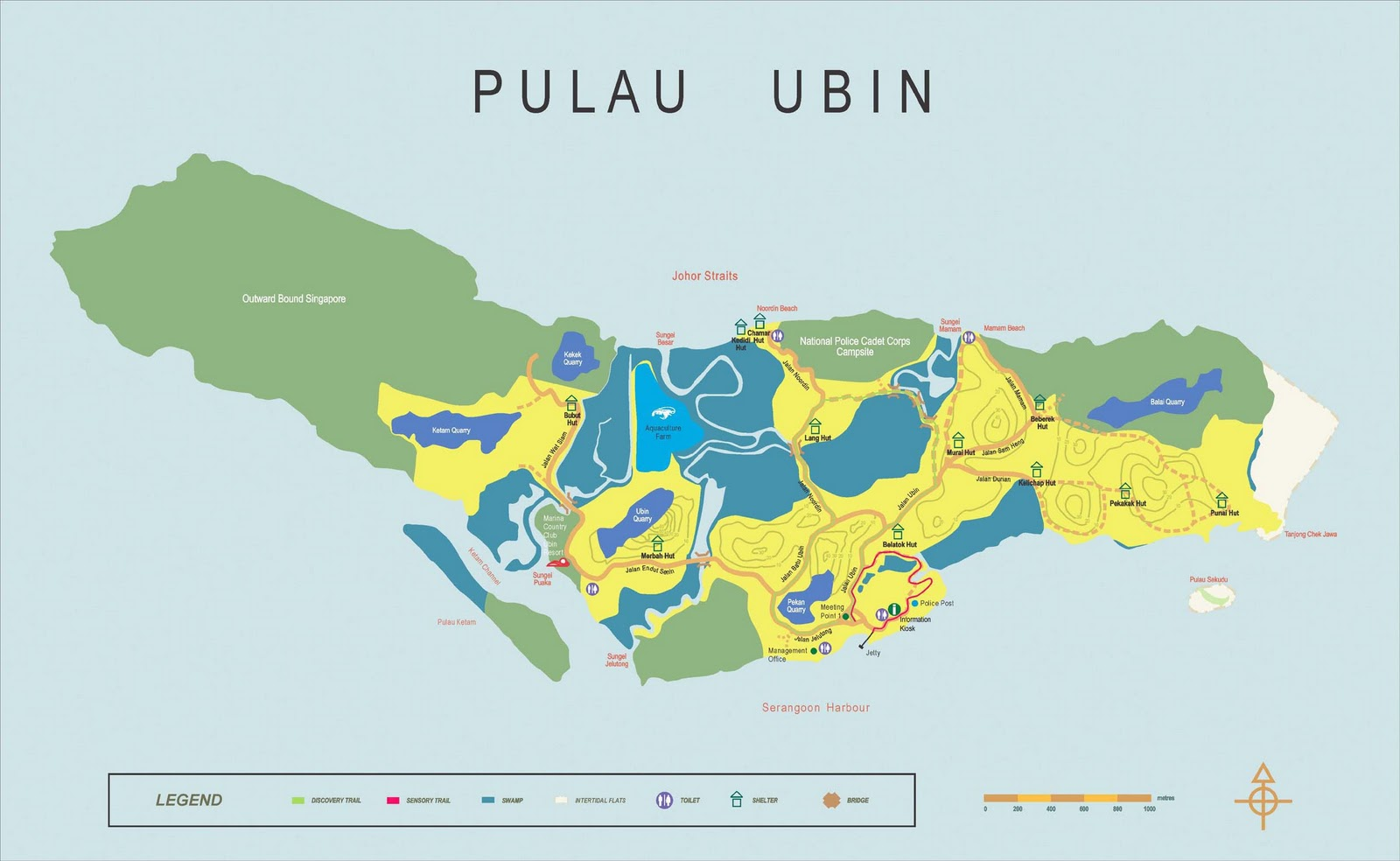 Coral Pattern Pulau Ubin Ubin Island