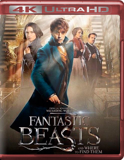 Fantastic Beasts and Where to Find Them [2016] [UHD] [2160p] [Español]