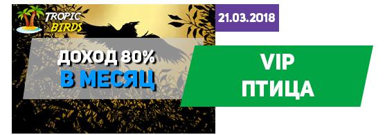 В игре tropic-birds.biz добавили VIP птицу