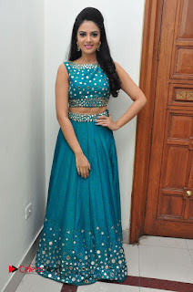 Sree Mukhi Pictures at Gentleman Audio Launch  0124