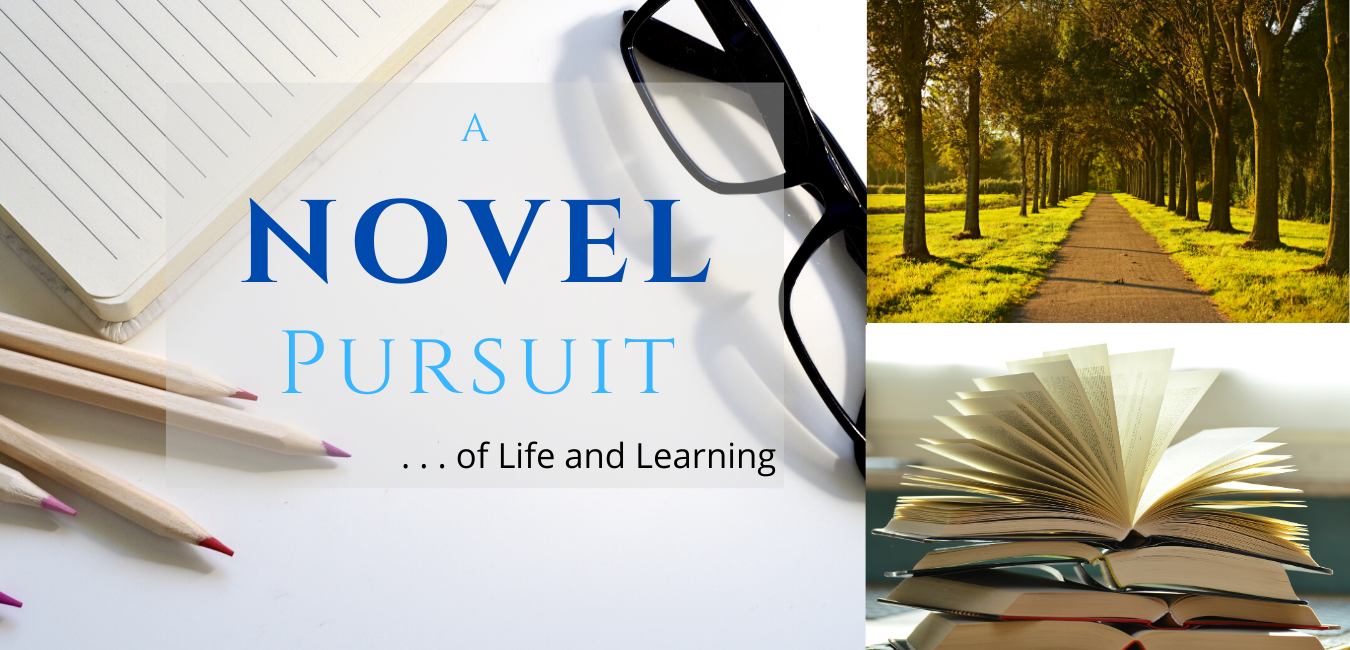 A Novel Pursuit