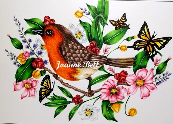 Robin coloured with copics on tree branch with flowers, butterflies, berries,leaves and plain background