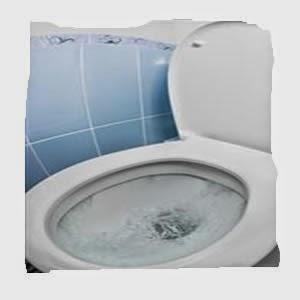 Texas Pronto Beberan Agua de Toilet
