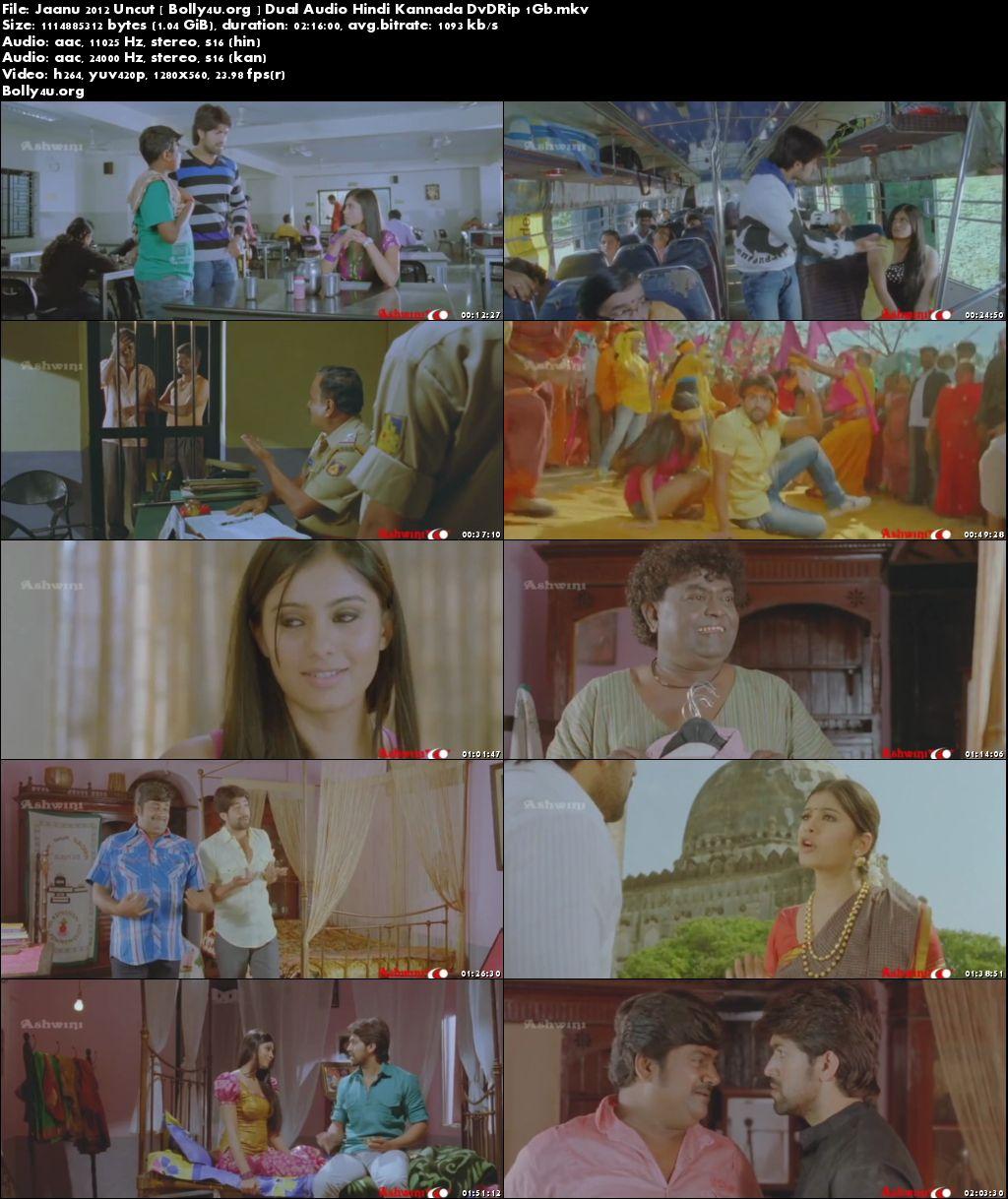 Jaanu 2012 DVDRip 1GB Hindi Dubbed UNCUT Dual Audio 720p Download