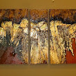 "Geological Abstract Art Painting ""GOLDEN MANTLE"" by Colorado Mixed Media Artist Carol Nelson"