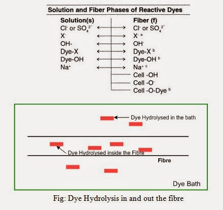 During the application of reactive dyes to cellulose fibers under highly alkaline conditions, a competing hydrolysis reaction takes place.