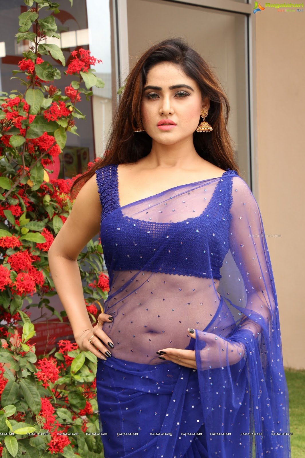Telugu Actress Hot Navel In Transparent Saree Pictures -9543