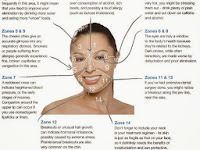 Face Acne Diagram
