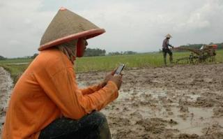 Cara Sadap SMS dan Telpon Pacar dan Seseorang di Tengah Sawah