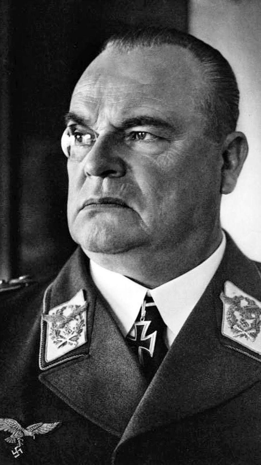 Hugo Sperrle commanded Luftlotte 3 in France throughout the war. The failures during the Battle of Britain weren't his fault: he wanted to continue attacking the airfields which almost everyone now agrees was the winning strategy. Goering once mentioned that Sperrle was his most
