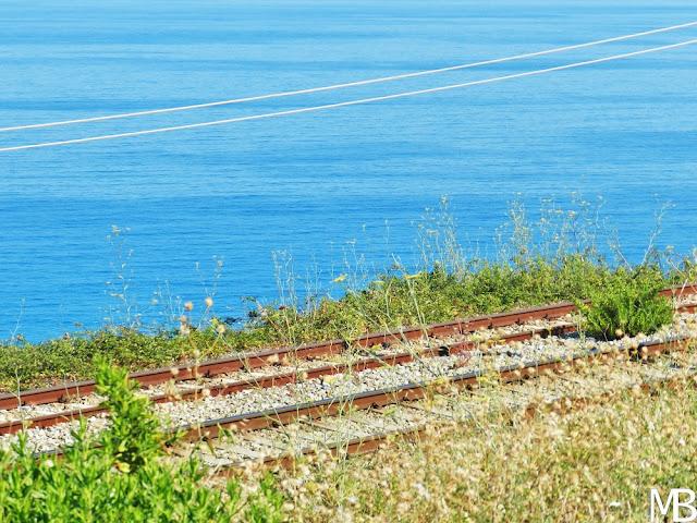 ferrovia costa degli dei calabria