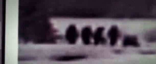 Una de las imagenes muestra hasta 6 Pie Grandes