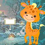 Games4King Petite Giraffe…