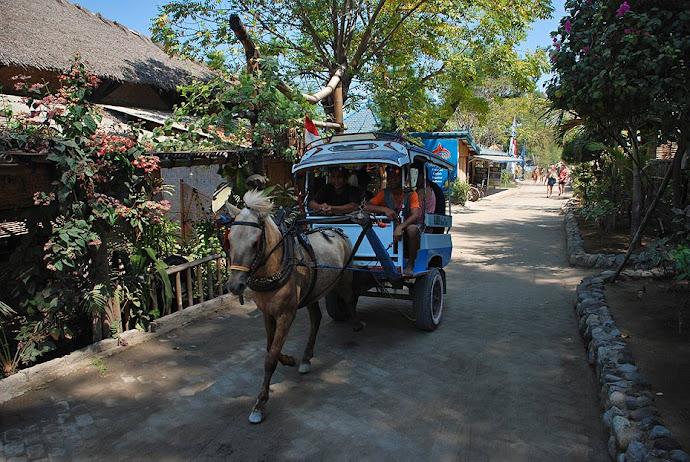 Carro tirado por un caballo