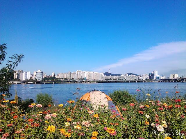 Nad rzeką Han.