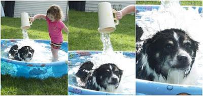 Lustiges Kind wäscht Hund im Pool