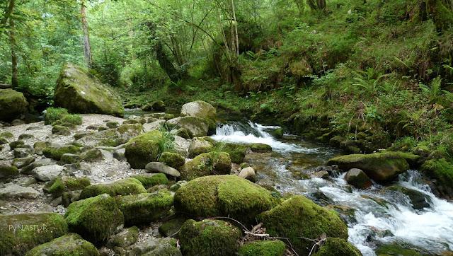 Río Infierno en el Área Recreativa de La Pesanca - Piloña - Asturias
