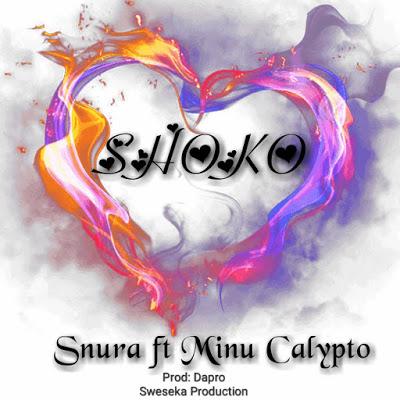 AUDIO | Snura Ft. Minu Calytpo - SHOKO | Mp3 Download [New Song]
