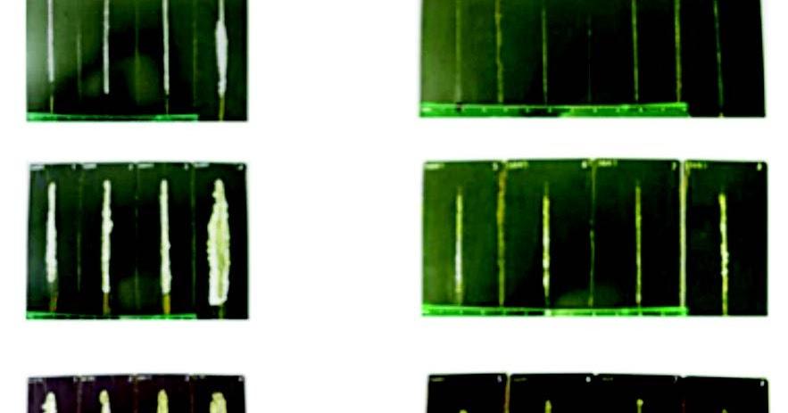 天聖金屬表面處理藥劑: 環保磷酸鹽皮膜鈍化劑