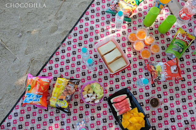 Piknik cantik di pantai