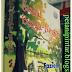 Review Novel : Sandal Bunga - Bunga Oleh Faziela