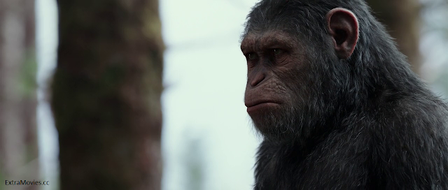 War for the Planet of the Apes 2017 full movie download in hindi hd free