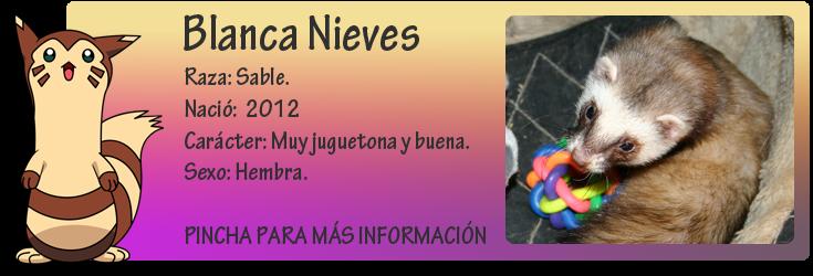 http://almaexoticos.blogspot.com.es/2015/04/blanca-nieves-la-hurona-mas-jueguetona.html