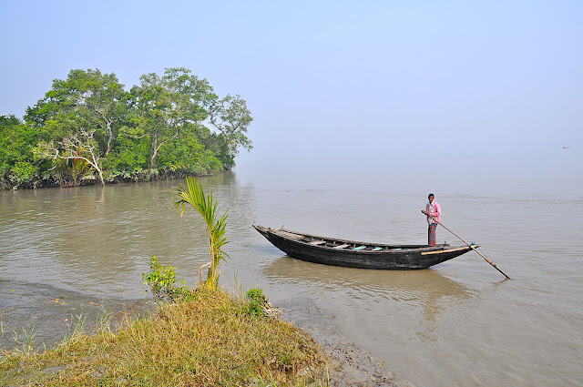 A local fisher man in the Pasur river passing through  Sundarbans - UNESCO World  Heritage site in India