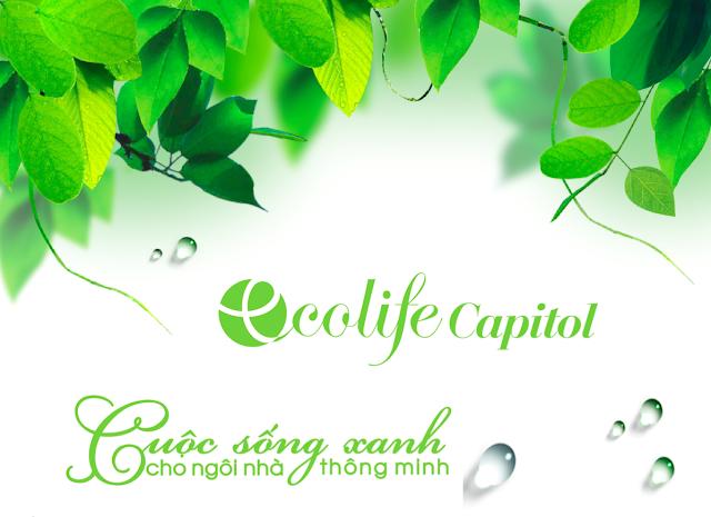 thi-truong-nha-dat-chung-cu-ecolife-capitol-le-van-luong-18