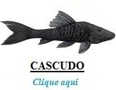 http://www.nodepesca.com.br/p/peixe-cascudo-nodepesca.html