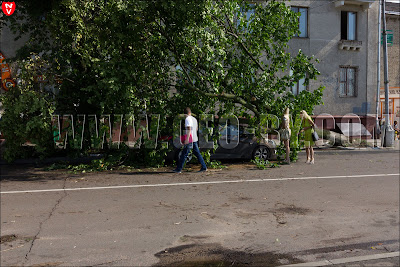 Минск. Дерево поваленное на автомобиль ураганом 13 июля