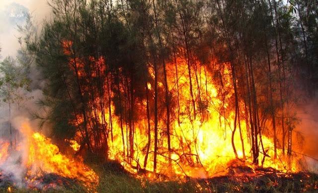 اندلاع موجة من الحرائق في قرى الصيد البحري بالداخلة المحتلة