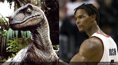 Chris Bosh = Ostrich. : pics