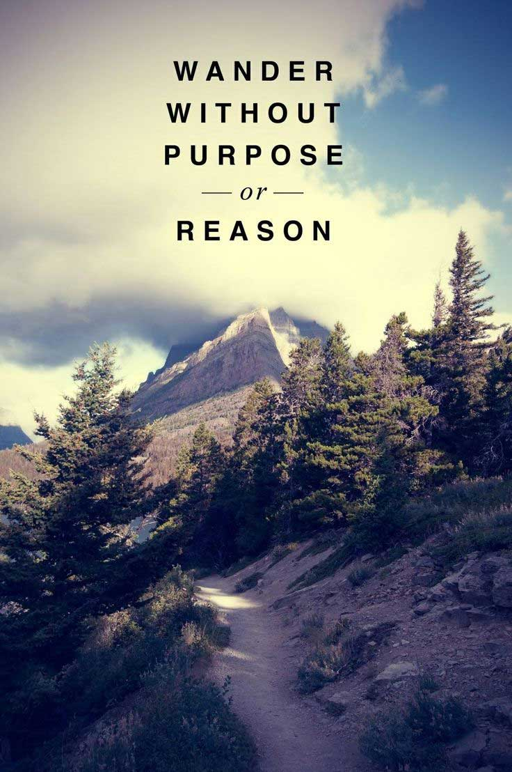 Wander without purpose or reason life quotes