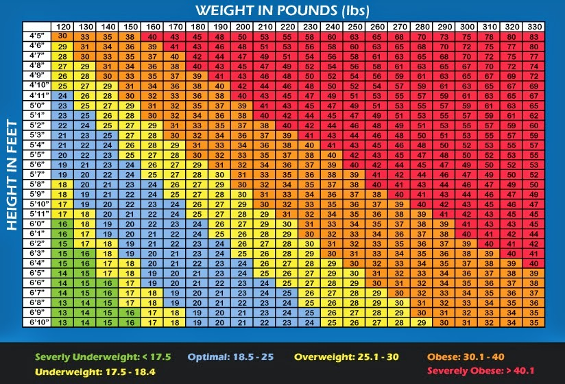 body fat percentage calculator waist and neck
