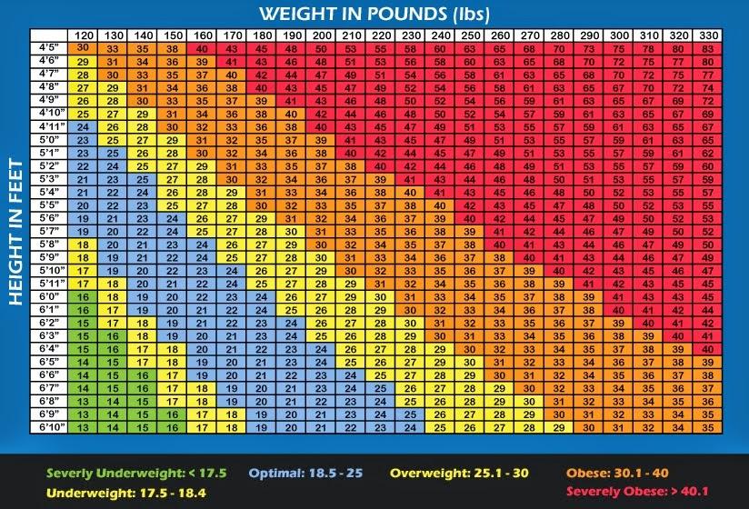 STRENGTH FIGHTER™ BMI Chart for Men  Women
