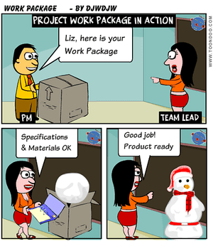 Project Work Package