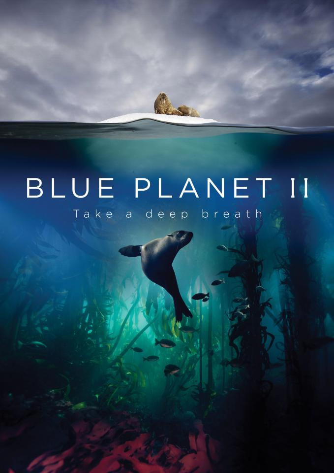Blue Planet II 2017: Season 1 - Full (1/NA)